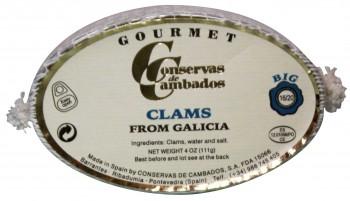 Clams from Galicia (Almejas)